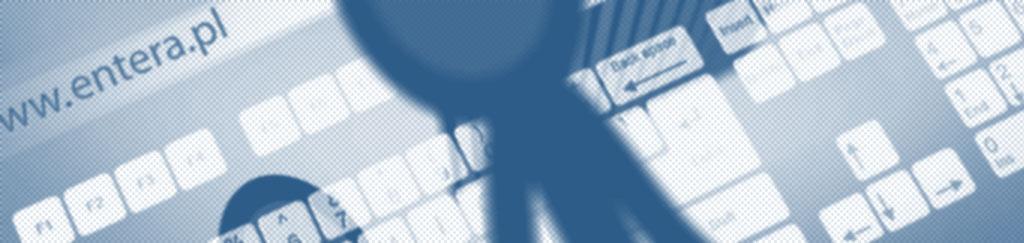 Standardy realizacji Entera Studio WWW