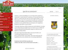Strona www Kochs - oferta