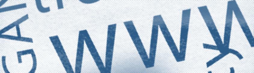 Standardy pracy Entera Studio WWW