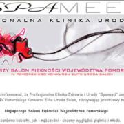 Strona www Spameed 2009