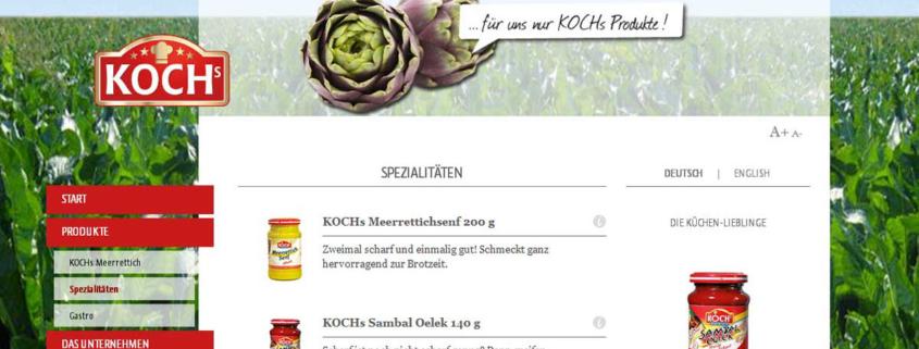 Strona www z katalogiem produktów koncernu Kochs
