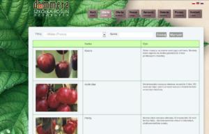 Portal ogrodniczy Dammera - wyszukiwanie produktów