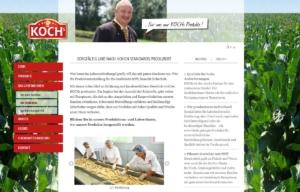Strona www Kochs - o firmie