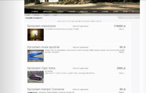 Portal internetowy Trzcianecki.pl - ogłoszenia