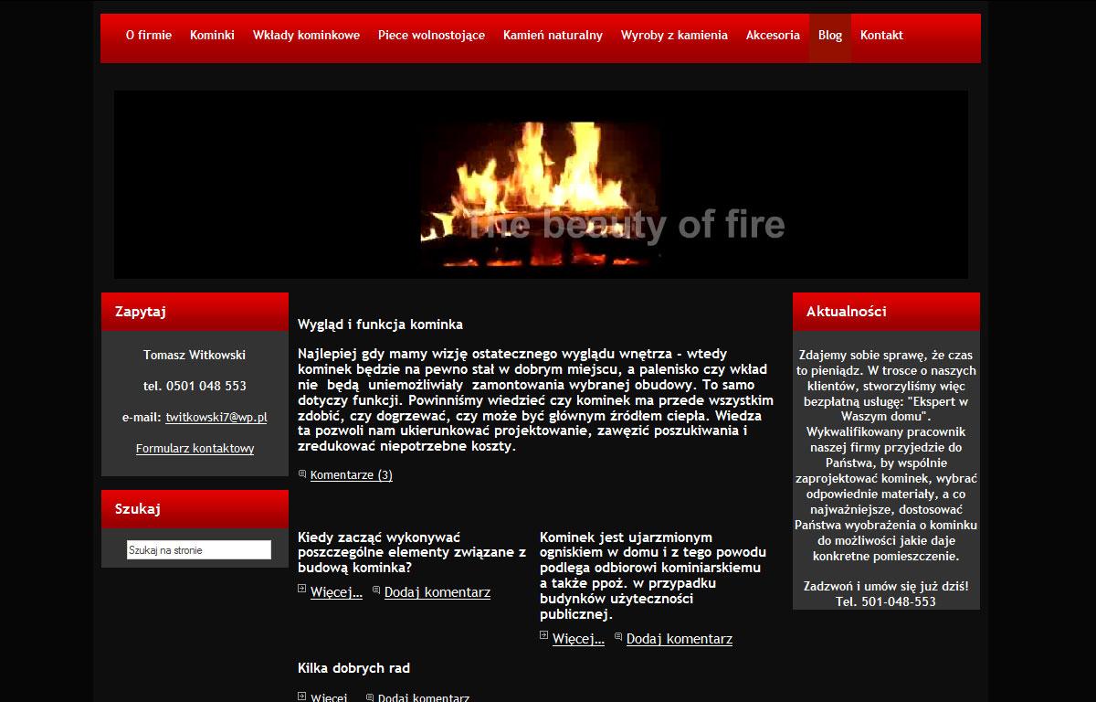 Strona www firmy Kominki Witkowski - aktualności