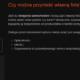 Entera Studio WWW pisze teksty na strony www Arteo