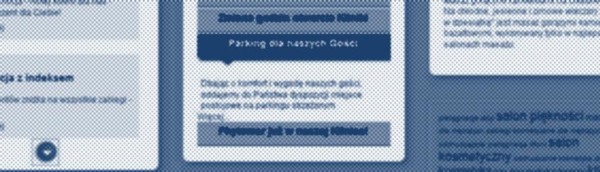 Entera Studio WWW optymalizuje stronę www Spameed s.c. pod kątem SEO