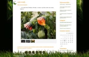 Zielona Pracownia to mini strona www zaprojektowana przez Entera Studio WWW - wpis na blogu