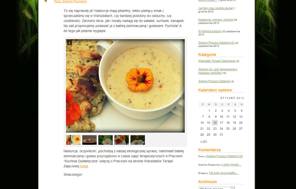 Zielona Pracownia to mini strona www zaprojektowana przez Entera Studio WWW - galeria