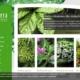 Nowa wersja katalogu produktów Szkółki Roślin Ozdobnych Dammera - strona startowa