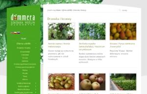 Nowa wersja katalogu produktów Szkółki Roślin Ozdobnych Dammera - prezentacja produktów