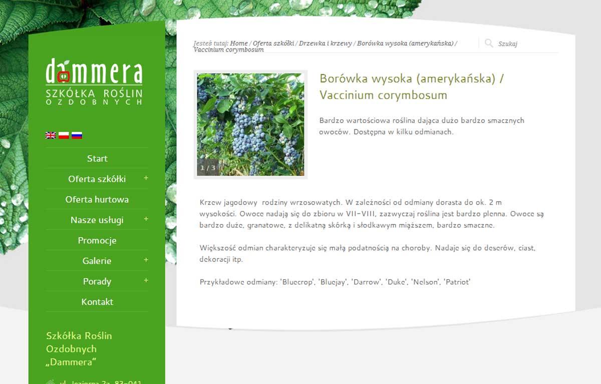 Nowa wersja katalogu produktów Szkółki Roślin Ozdobnych Dammera - karta produktu